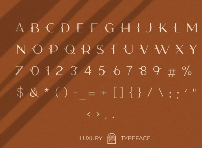 Camelia Sans Typeface Free - UI Freebies