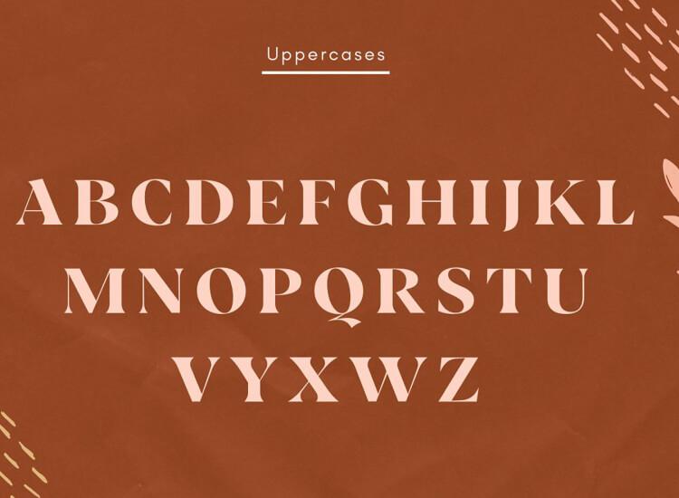 Vickey Vintage Typeface 4 - UI Freebies