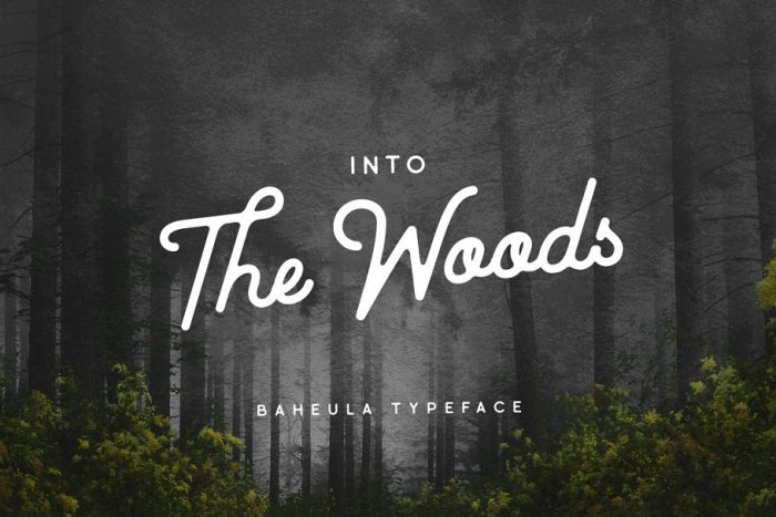 retro vintage fonts baheula - UI Freebies