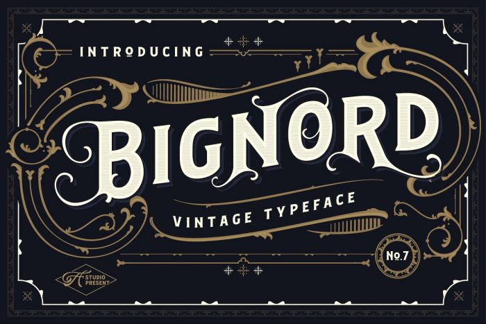 retro vintage fonts bignord - UI Freebies