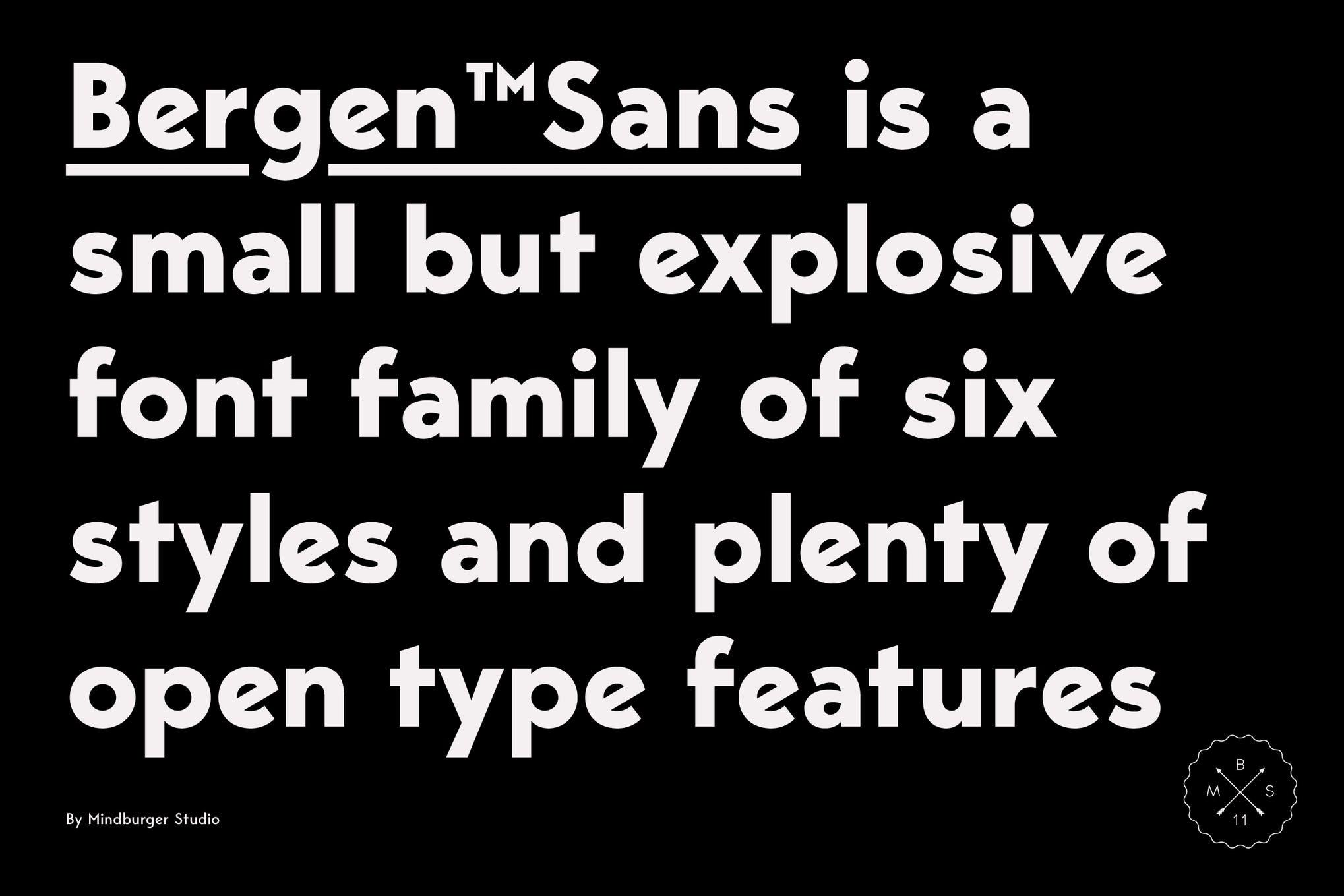 sans serif fonts bergen - UI Freebies