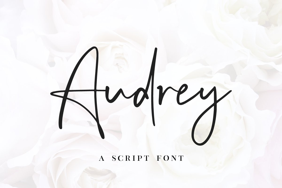 script fonts audrey - UI Freebies