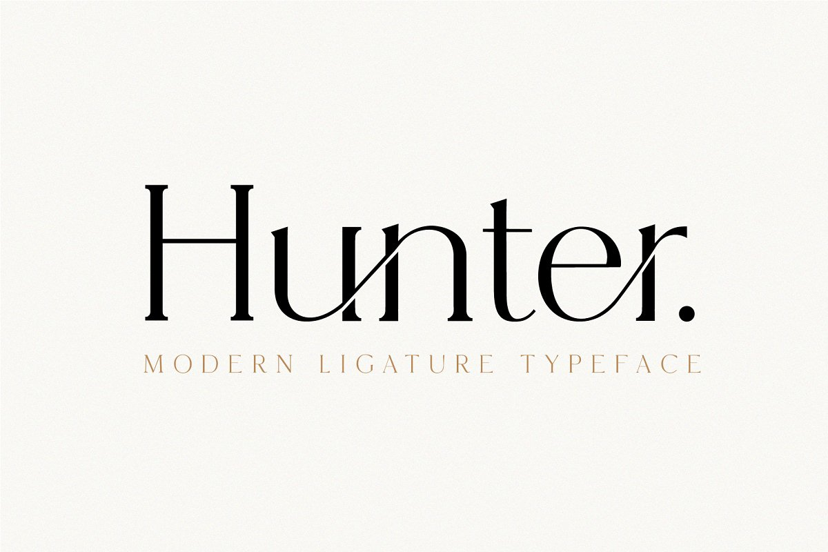 serif fonts hunter - UI Freebies