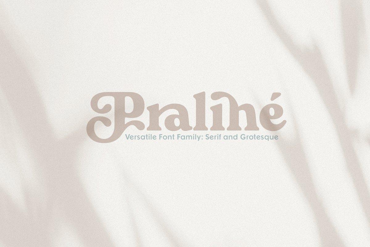 serif fonts praline - UI Freebies