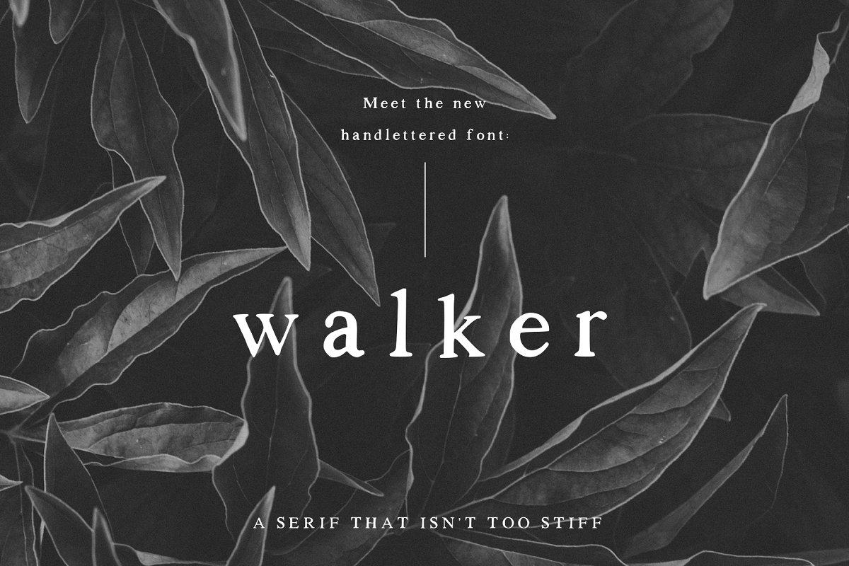 serif fonts walker - UI Freebies