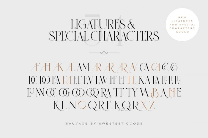 sauvage font 2 - UI Freebies