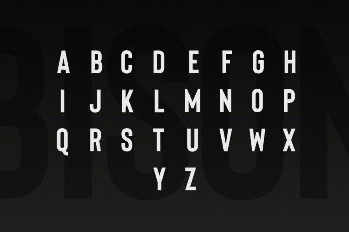 Bison Font Download - UI Freebies